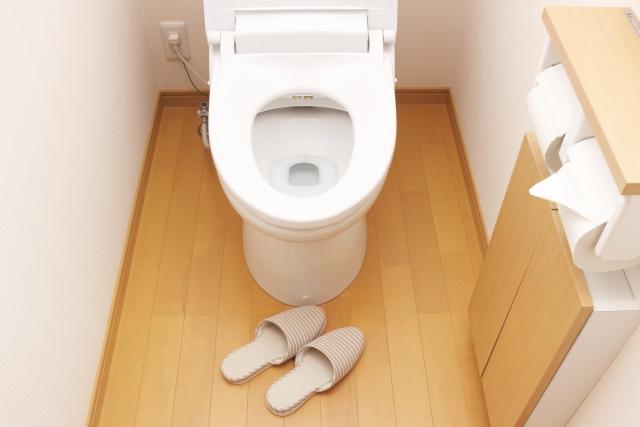 おしゃれで清潔なトイレに!壁から床まで掃除していこう