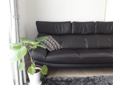 カリモク家具とカリモク60の違いをソファカバーから読み解く